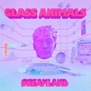 Glass Animals, Your Love (Déjà Vu)