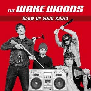 Blow up Your Radio