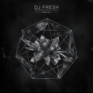 Avatar de DJ Fresh Feat. Stamina MC & Koko