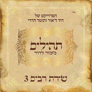 Shirat Rabim 3 (Mizmor LeDavid)