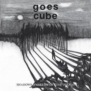 Shadows Swallowed the Flood
