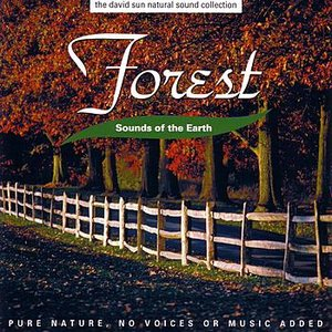 Sounds Of The Earth: Forest