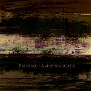Amnesiascape