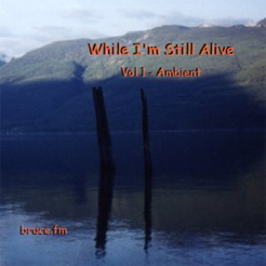While I'm Still Alive Vol 1 - Ambient