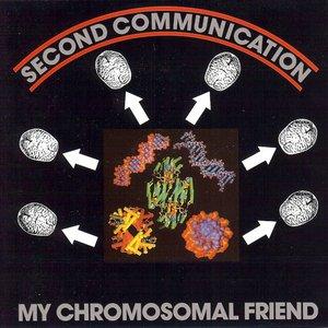 My Chromosomal Friend