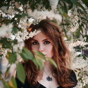 Avatar for Alina Gingertail