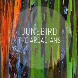 Junebird