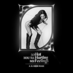 So Hot You're Hurting My Feelings (A. G. Cook Remix)