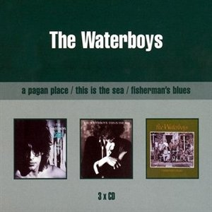 A Pagan Place / This Is The Sea / Fisherman's Blues