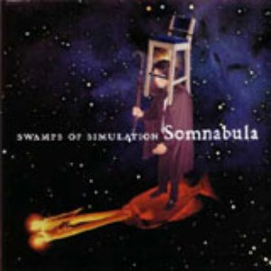 Swamps of Simulation