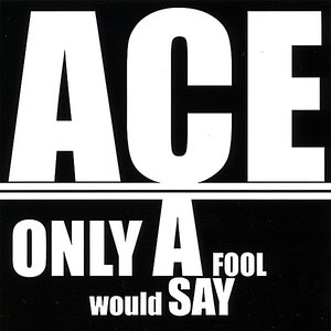 Only A Fool Would Say