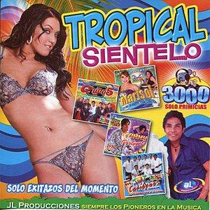 Tropical Sientelo