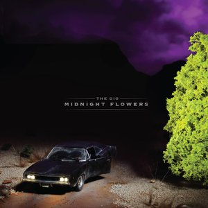 Midnight Flowers
