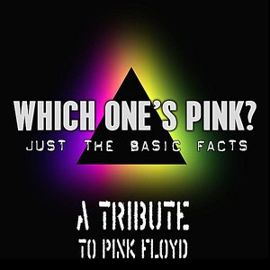 Pink Floyd Tribute: Just the basic facts