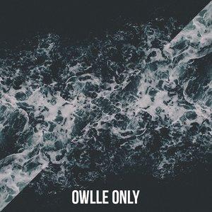 Аватар для Owlle Only