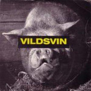 Vildsvin のアバター
