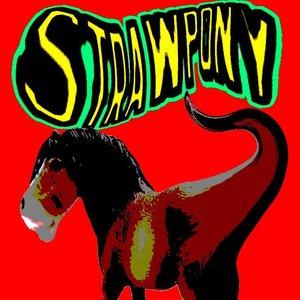 Avatar for StrawPony