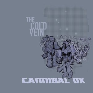 Image for 'The Cold Vein'