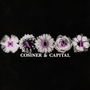 Awatar dla Cosiner & Capital