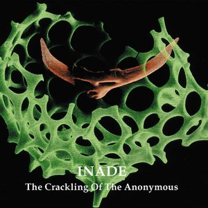 The Crackling Of The Anonymous