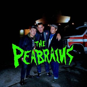 Image for 'The PeaBrains'