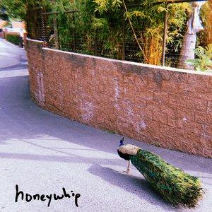 Avatar für Honeywhip