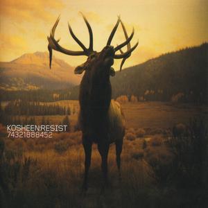 Kosheen - Catch