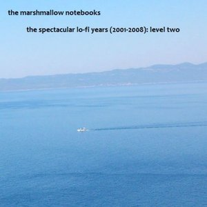 The Spectacular Lo-Fi Years (2001-2008): Level Two