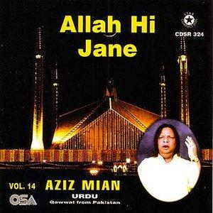 Allah Hi Jane