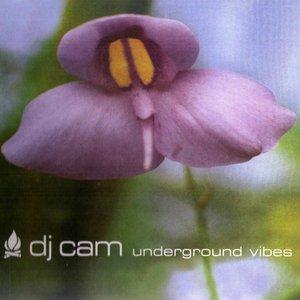 Underground Vibes