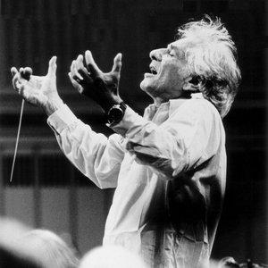 Avatar de Leonard Bernstein, Wiener Philharmoniker