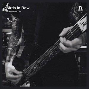 Birds in Row on Audiotree Live