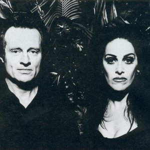Image for 'Diamanda Galás with John Paul Jones'