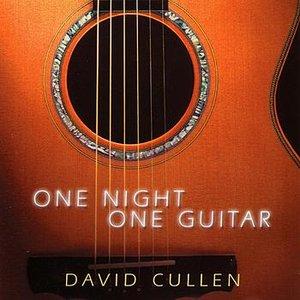 One Night, One Guitar
