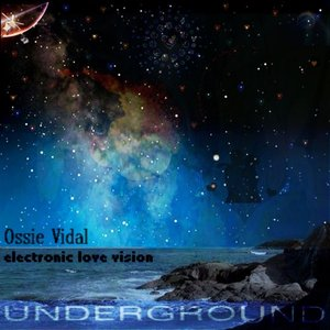Electronic Love Vision