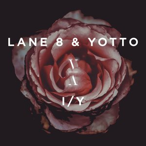 Avatar for Lane 8 & Yotto