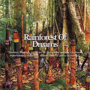 Rainforest of Dreams