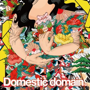 Domestic Domain