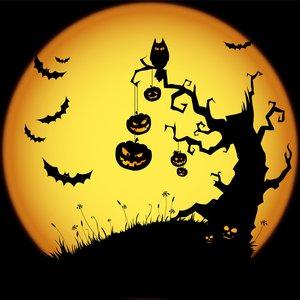Avatar for Halloween Music
