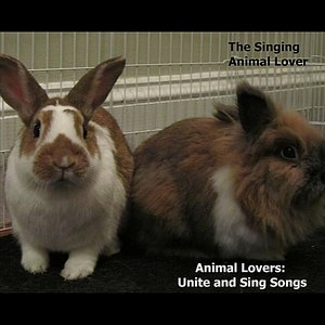 Animal Lovers: Unite and Sing Songs!