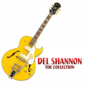 DEL SHANNON - The Definitive Collection - Lyrics2You