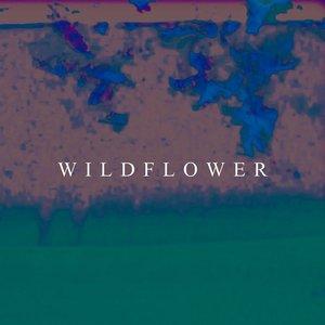 Wildflower - Single