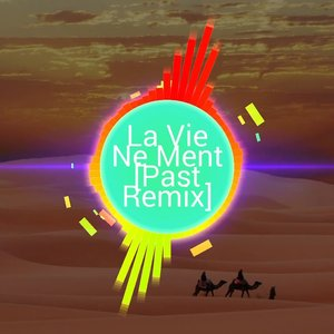 La Vie Ne Ment Past - Instrumental (Original Remix)