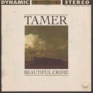 Beautiful Crime - Single