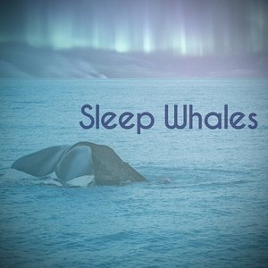 Sleep Whales