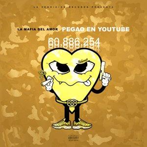 Pegao en Youtube