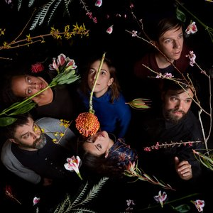 Avatar for Dirty Projectors