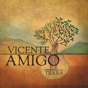 Avatar de Vicente Amigo Girol