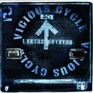Image for 'Vicious Cycle'