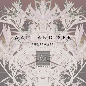 Wait and See (The Remixes)